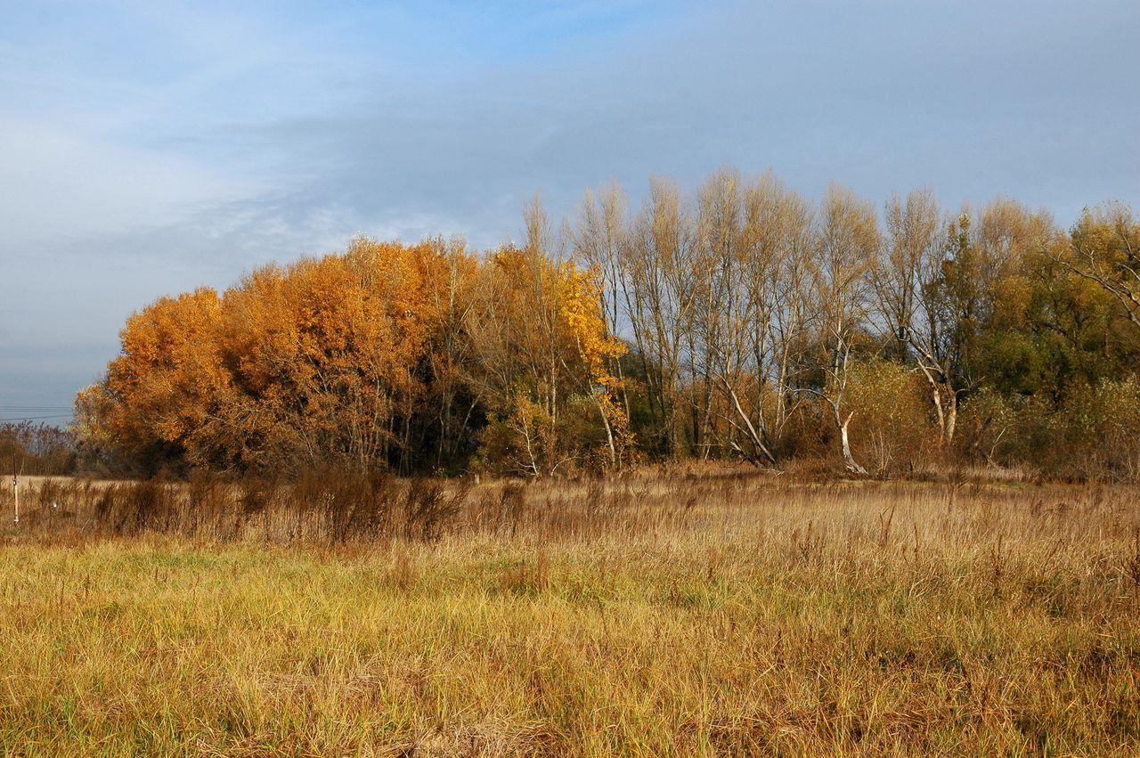 A Turjános őszi látképe