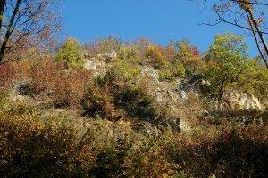 A védett terület felhagyott kőfejtőjének őszi látképe