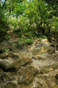 Az orom markáns dolomitszikla kibúvásainak egyike