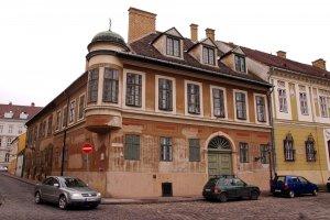 A várban található Bécsi Kapu tér 8.-as számú ház, melynek belső udvarában található a védett szőlőtőke