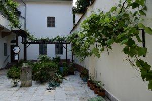 A támrendszeren nyugvó szőlőtőke az egész belső udvart behálózza