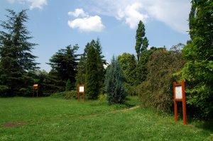 A gyűjteményes kert alsó részének gazdag örökzöld gyűjteménye van, melyben helyet kapott egy Madártani Egyesület által készített Madárbarát Kert kiállítás