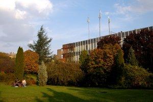 Az arborétum őszi hangulata lenyűgöző