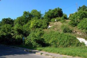 A védett terület déli részének látképe a Denevér utca felől