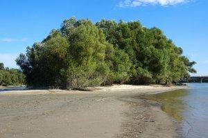 Alacsony vízállás esetén a sziget körül kiterjedt homok és kavicspadok kerülnek a szárazra. Ilyenkor száraz lábbal is meg lehet közelíteni a területet