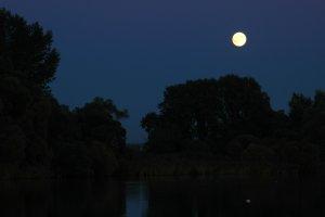 A tó és partjának éjszakai látképe