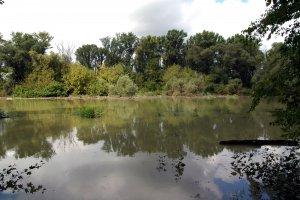 A Duna áradása idején a sziget déli része teljesen víz alá kerülhet