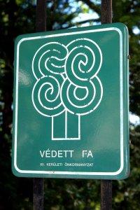 A fa védettségét jelző, XII. kerületi Önkormányzat által kihelyezett tábla, melyet 2013-ban felváltott a Fővárosi Önkormányzat által rendszeresített hatszögletű hatósági tábla
