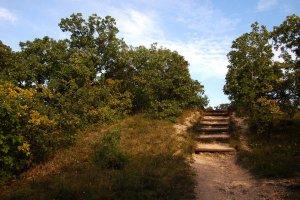A hegy sétaútjainak kiépítettsége mindenütt megfelelően segíti a bejárást