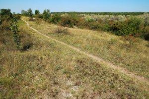 A védett területen számos keskeny ösvény segíti a bejárást